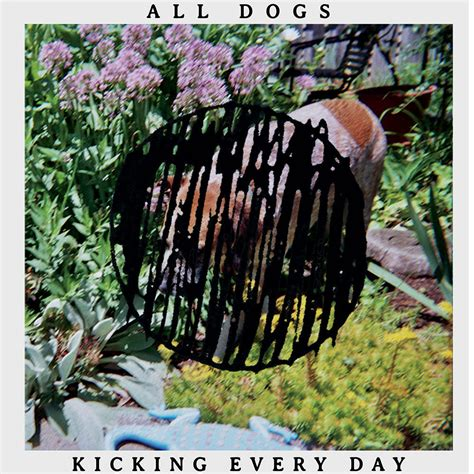 dogs all day kicking every day cover