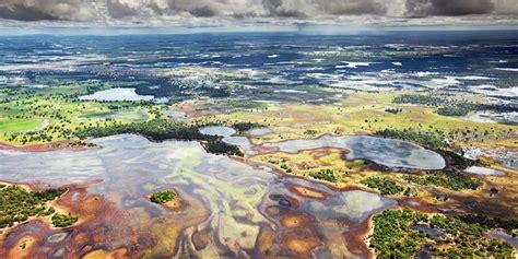 amazon adalah mengenal hutan pantanal hutan yang tak kalah dengan