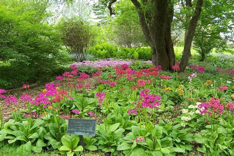 botanical garden gardens of the berkshires
