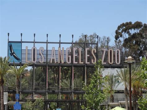 Los Angeles Zoo And Botanical Gardens Baby Giraffe With Picture Of Los Angeles Zoo Botanical Gardens Los Angeles