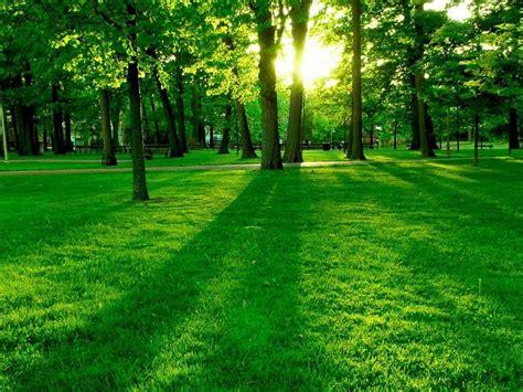 imagenes paisajes cos verdes photo hermosa paisaje verde paisajes pinterest