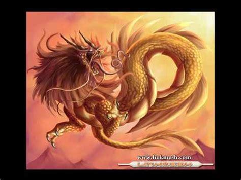 imagenes de zorrillos reales 191 dragones reales o fantasia tercera parte youtube