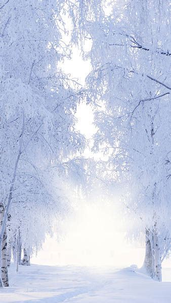 winter iphone   wallpaper gallery yopriceville high quality images  transparent png