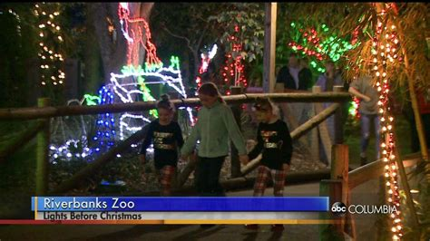 riverbanks zoo goes wild with christmas lights abc columbia