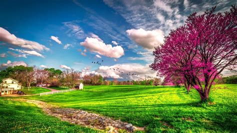 beautiful spring landscape beautiful spring nature hd wallpaper
