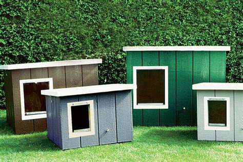 double dog house for sale dog houses for sale unusual dog houses for sale brunswick double dog house large 10
