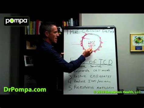 Dr Pompa Best Detox by What Is True Cellular Detox And Cellular Detoxification