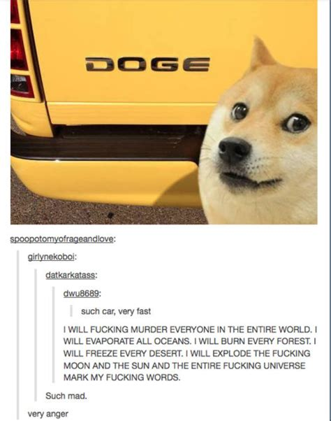 Funniest Doge Meme - best of the doge meme 15 pics weknowmemes