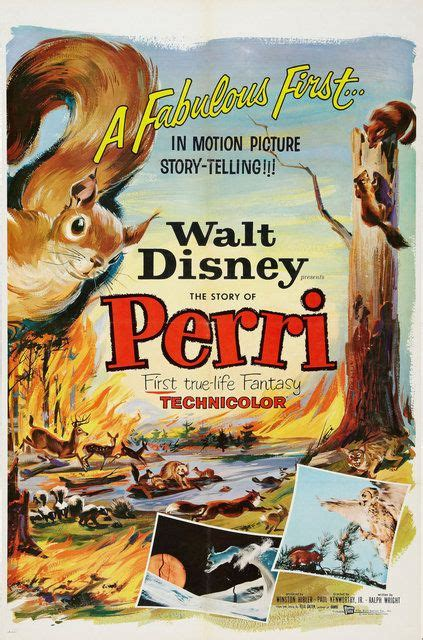 film fantasy walt disney perri a true life fantasy perri 1957 posters of