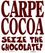 carpe cocoa seize the chocolate 40 recipes to celebrate chocolate sweet and spicy bark bites dips sauces truffles treats books 155 best images about indi chocolate llc on