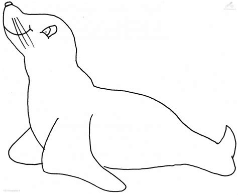 coloring pages sea lions sea lion coloring pages az coloring pages