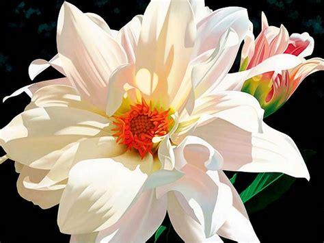 imagenes de flores que se mueven rock solid imagenes que se mueven de flores