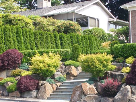 seattle landscape and design salmon bay landscaping