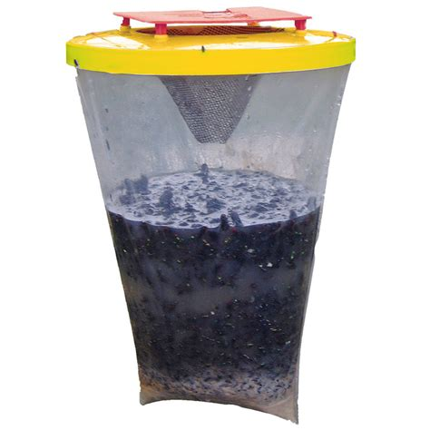 house fly trap popular fly trap buy cheap fly trap lots from china fly trap suppliers on aliexpress com