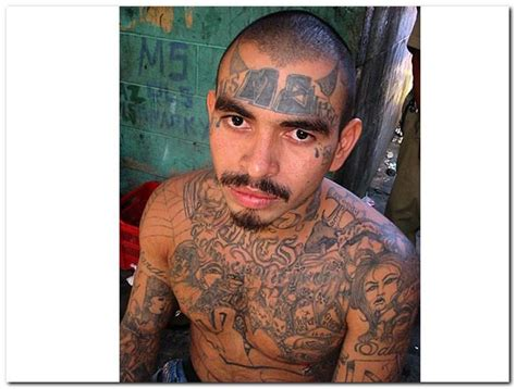 ms 13 gang tattoos pin by nawaz hussain01 on ms 13