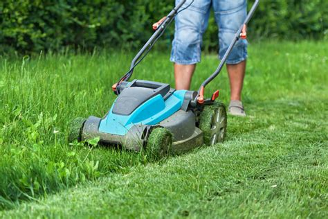 cutting grass games with a lawnmower 10 really good small lawn mower options for 2018