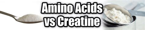 amino or creatine amino acids vs creatine mr supplement australia