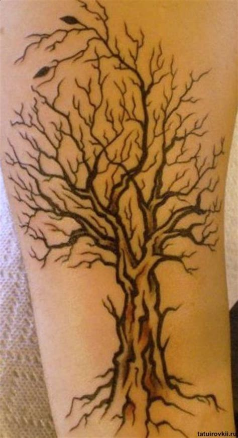 sohl family tree tattoo design tree tattoos tat tat tatted up