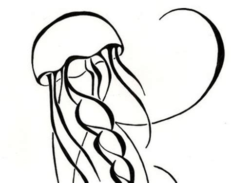 jellyfish drawing clipart best clipart best