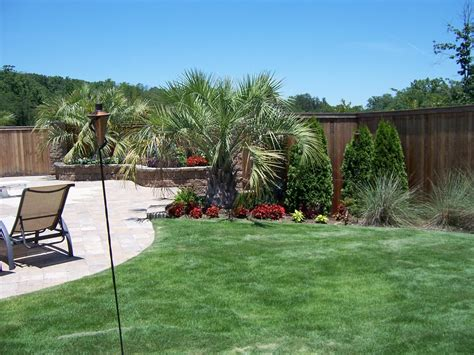 palm tree landscaping harwell palm tree landscaping quality creative landscaping llc