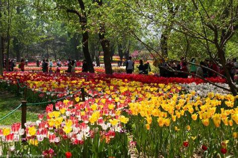 Beijing Botanical Garden Picture Of Beijing Botanical Beijing Botanical Garden