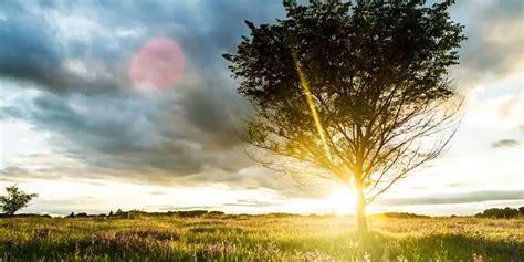 imagenes de paisajes sin color im 193 genes de paisajes 174 fotos de paisajes bonitos