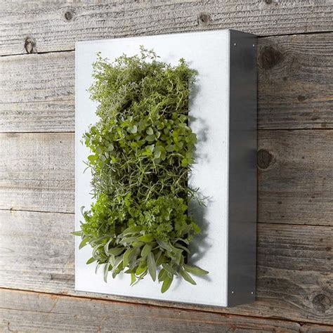 galvanized vertical wall planter williams sonoma