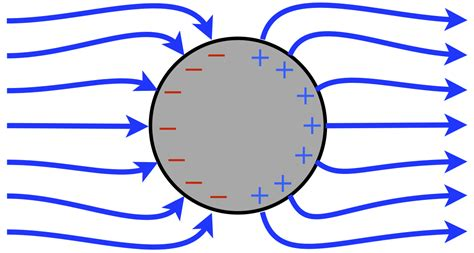 electric field within conductor the electric field inside any empty cavities inside the metal is also zero