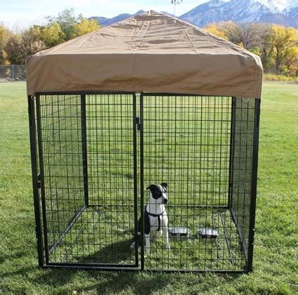 dog kennel sections 8 x 8 x 6 complete welded wire modular dog kennel