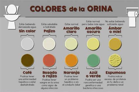 el color de la el color de la orina dice todo sobre tu salud 161 esto es lo que significa su color y que podr 205 a