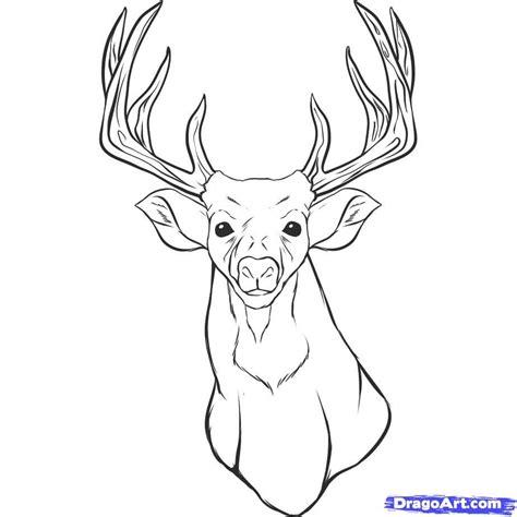 basic deer drawing google search tutorials deer drawing art art and drawings