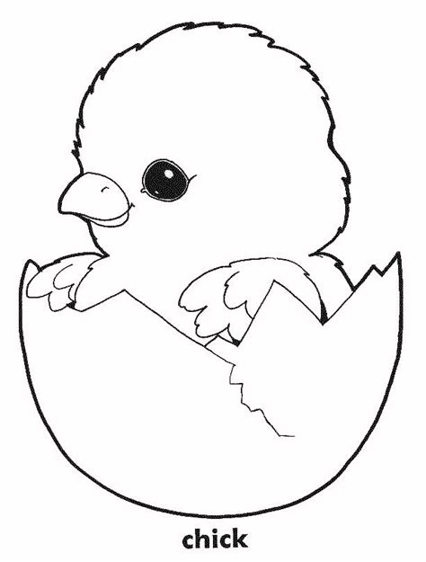 coloring page baby chick free coloring pages of baby chicks