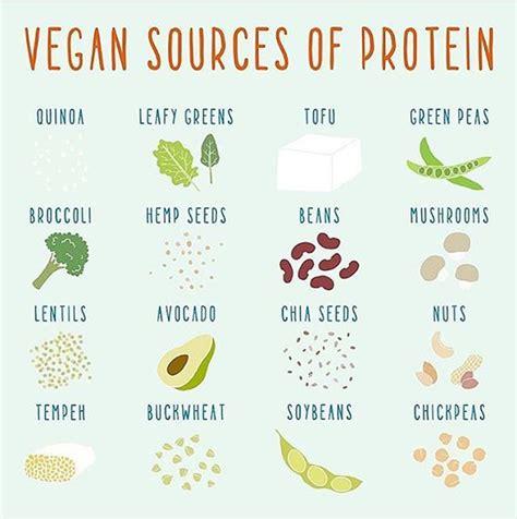 Vegan Quotes Extraordinary Best 25 Vegan Quotes Ideas On Vegan Inspiration
