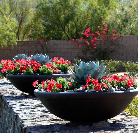 garden arrangements 34 sharp cactus garden ideas
