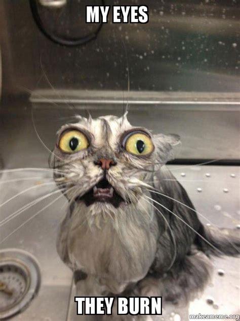 My Eyes Meme - my eyes they burn cat bath make a meme