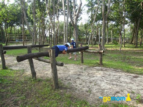 backyard obstacle course for adults adult obstacle course www imgkid com the image kid has it