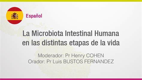 la biografa humana 03 la microbiota intestinal humana en las distintas etapas de la vida youtube