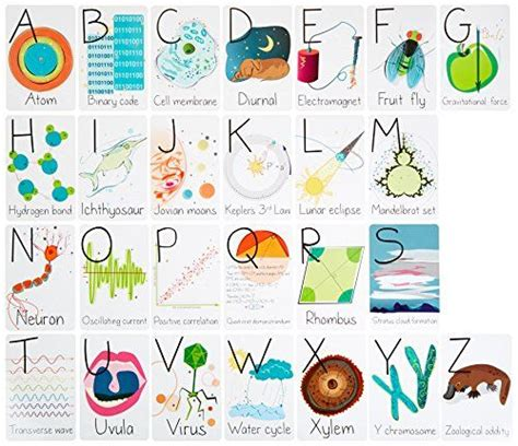 print flash cards kinkos 17 best images about kids books toys on pinterest