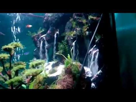Pompa Aquarium Awet air terjun aquascape terindah