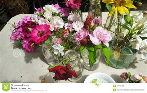 Cut Flower Preservation For Extended Vase by Freshly Cut Flower From Garden Ready For Arranging Stock Image Image 58192495