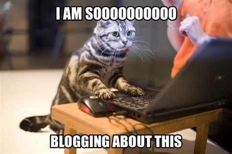 Blogging Memes - how to write a successful law blog and land a job off