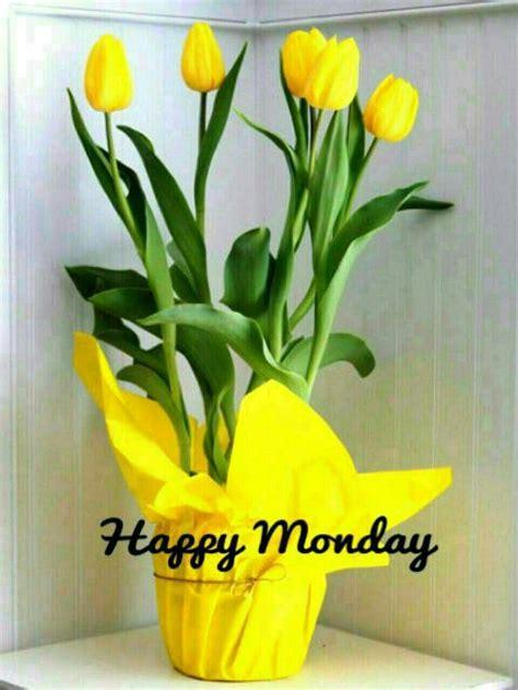 good morning sister   happy mondayand happy week