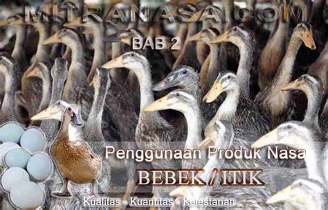 produk nasa untuk ternak bebek itik