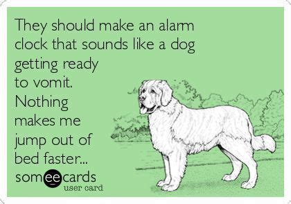 how to get dog vomit smell out of couch they should make an alarm clock that sounds like a dog