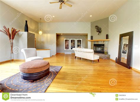 living room closet royalty free stock images image 6383969 fantastic modern living room home interior royalty free