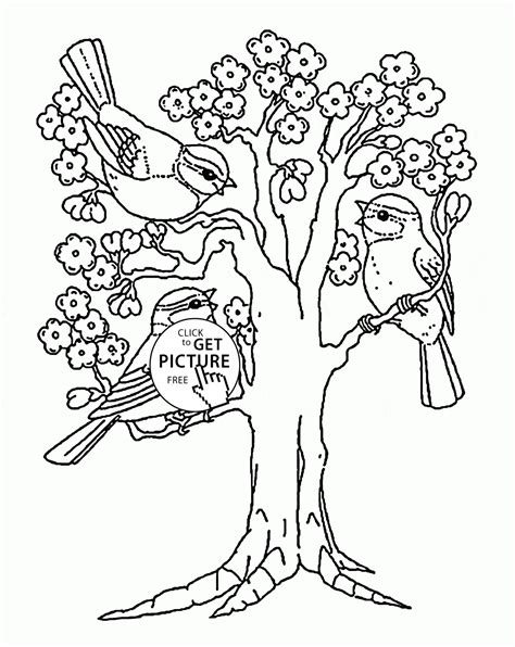 coloring pages of spring trees spring blooming tree coloring page for kids seasons