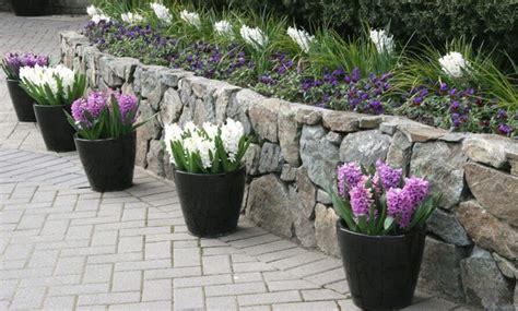 fiori per vasi da esterno vasi per piante vasi da giardino tipologie di vasi per