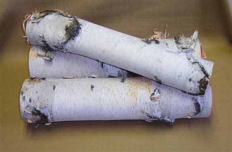 White Birch Fireplace Logs by Object Moved