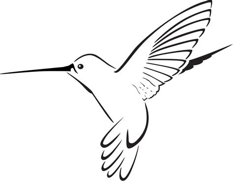 Hummingbird Outline Picture by Hummingbird Clipart Clipart Panda Free Clipart Images