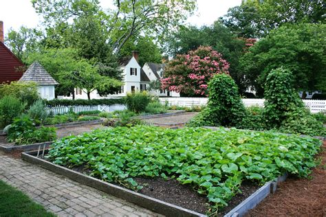 backyard garden a pretty backyard garden in williamsburg virginia my